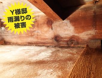 雨漏り被害のあった屋根裏