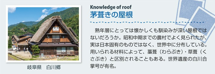 茅葺きの屋根(岐阜県 白川郷)