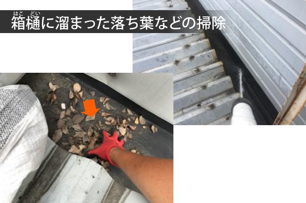 箱樋に溜まった落ち葉などの掃除