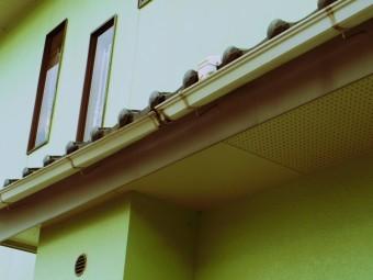 真子町、雨樋軒樋の全体の落ち