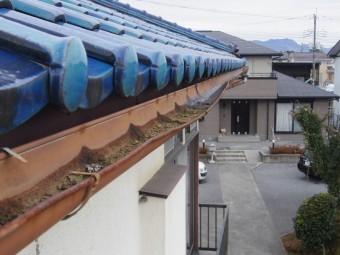 栃木市y様東面雨樋