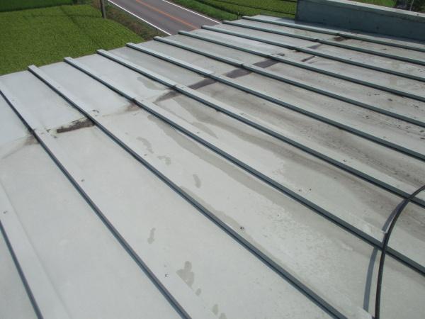 施工前の大屋根です