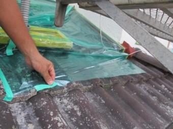 下屋根を養生しました