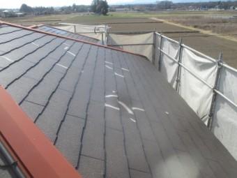 大屋根のプライマー塗装が終了しました