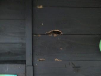 外壁の補修前です