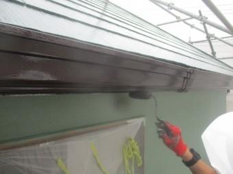 雨樋の塗装中です