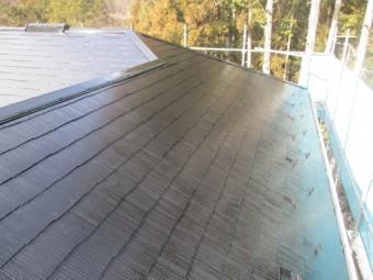 大屋根の上塗り塗装が終了しました