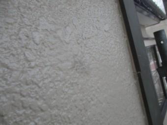 外壁に付いた塗料です