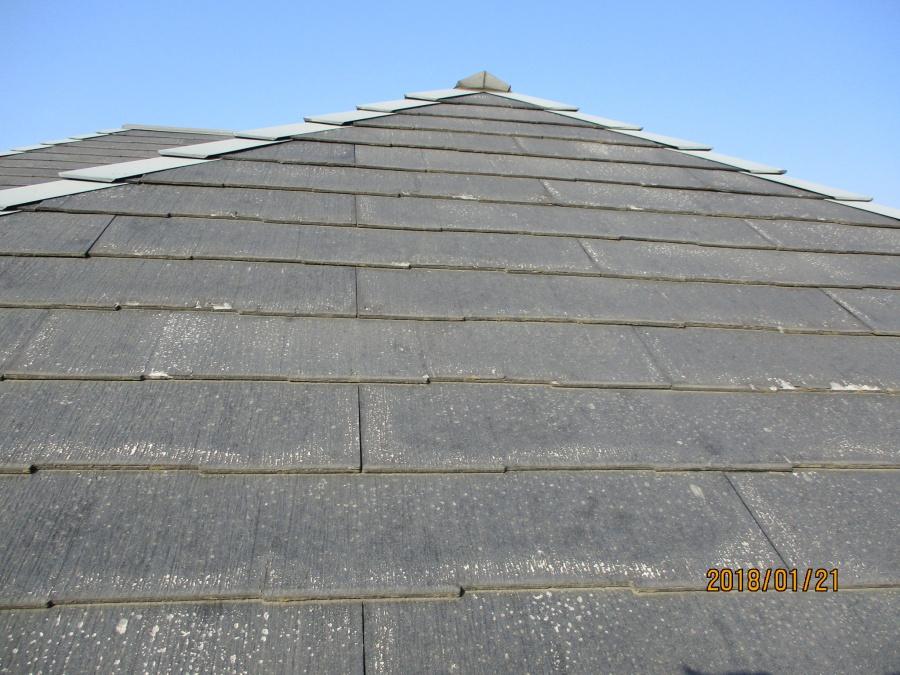 屋根の状態です