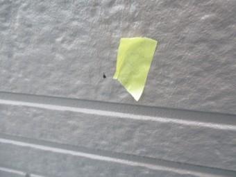 外壁の塗料汚れです
