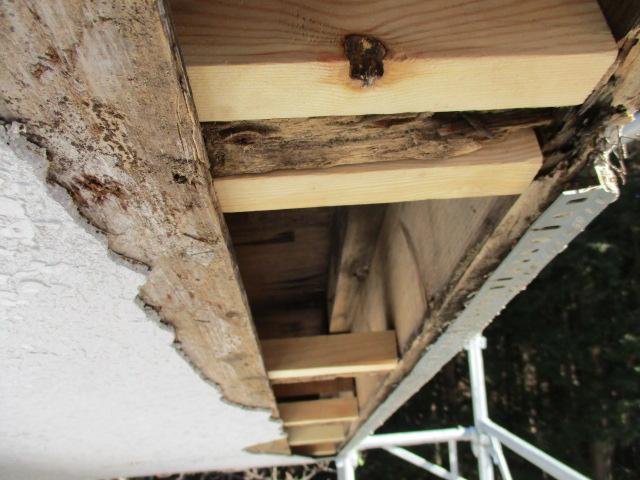 垂木を補強しました