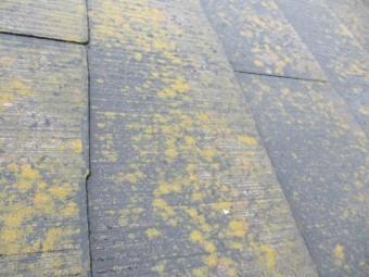 コロニアル屋根材の表面の状態です