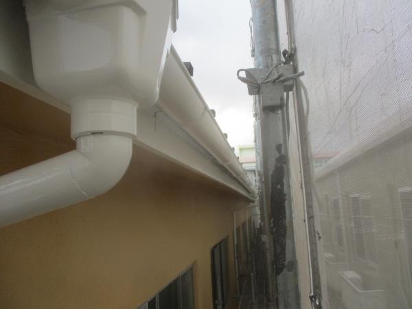 雨樋の塗装が終了しました
