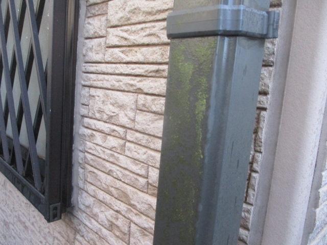 洗浄前の雨樋の状態です