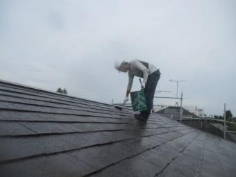 大屋根の上塗り2回目です