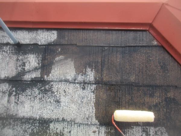 下塗りのローラー塗装中です