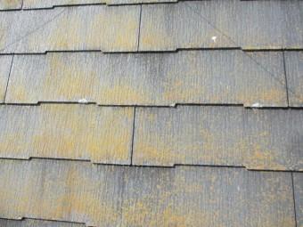 傷んだコロニアル屋根材の状態です