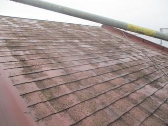 施工前の北面屋根の状態です