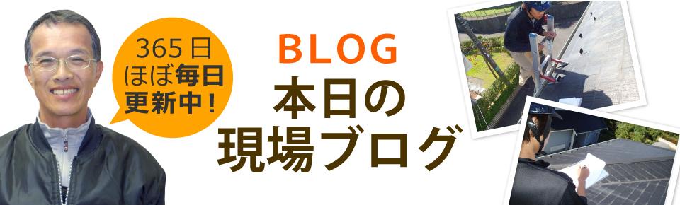 宇都宮市、さくら市、鹿沼市、日光市やその周辺エリア、その他地域のブログ