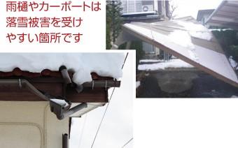 雨樋やカーポートは落雪被害を受けやすい場所です